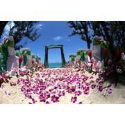 Организация свадьбы фотография
