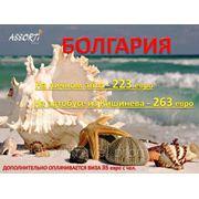 Болгария на личном авто или автобусе от 223 евро!!! фотография
