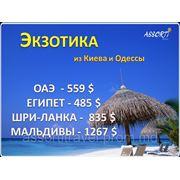 ЭКЗОТИКА из Киева и Одессы!!! фотография