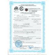 Сертификат соответствия на светильники СЕ-ОФИС
