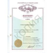 patent_na_termoelektromat.jpg