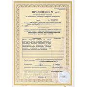 Приложение к лицензии на прекурсоры