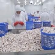Производство куриных лап и говяжьей книжки (экспорт Китай)