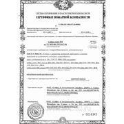 сертификат на пожаростойкость сейфов ВМ, ВМI — страница 1