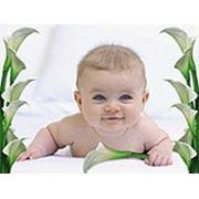 «Любимый Малыш»