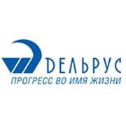 Логотип компании Дельрус РК (Нур-Султан)