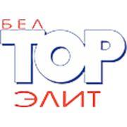 "Логотип компании ООО ""БелТОР-Элит"" (Минск)"