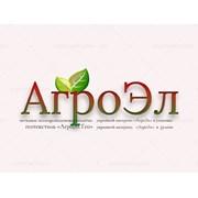 Логотип компании AGROEL (Uzb)  (Ташкент)