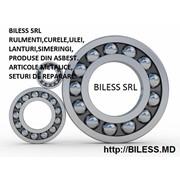 Логотип компании Biless (Билес), SRL (Кишинев)