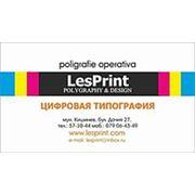 Логотип компании LesPrint (Кишинёв)