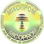 Микопром