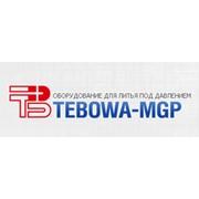Логотип компании Tebowa-MGP (Тебова МГП), SRL (Тирасполь)