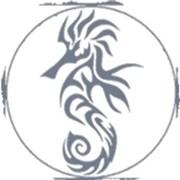 Логотип компании Hippocampus (Таллин)