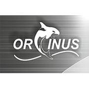 ТОО «Оркинус»
