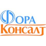 Логотип компании ФОРА-КОНСАЛТ (Москва)