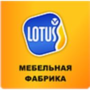 "ООО ""ЛОТУСМЕБЕЛЬ"""