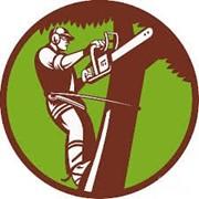 Логотип компании Альпийский стиль, ЧУП (Витебск)