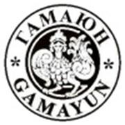 Логотип компании Гамаюн, ООО (Григориополь)