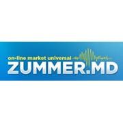 Логотип компании ZUMMER-TEH, SRL (Кишинев)