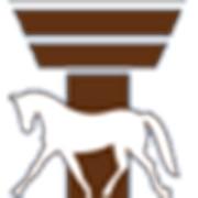 Логотип компании Республиканский центр олимпийской подготовки конного спорта и коневодства (Ратомка)