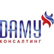 Логотип компании ДАМУ Консалтинг (Нур-Султан)