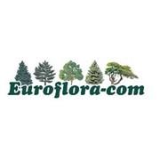 Euroflora-Com, SRL
