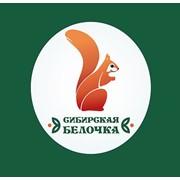 Сибирская белочка, ООО