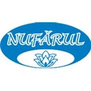 Логотип компании NUFĂRUL, SA (Кишинев)