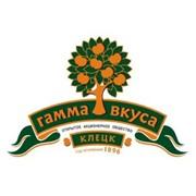 Логотип компании Гамма вкуса, ОАО (Клецк)