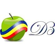 Логотип компании Darurile Basarabiei, SRL (Бельцы)