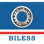 Логотип компании BILESS SRL (Кишинев)