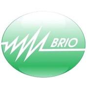 Логотип компании Бриолайт электрикс, ООО (Москва)