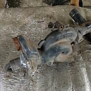 Корпус помпы 5600426945 / Renault фото