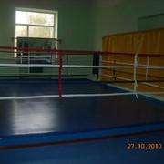 Изготовление рингов для смешанных боёв, размеры под заказ по Украине, Харьков фото