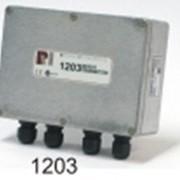 Весодозирующий передатчик веса Rinstrum WT 1203 (Австралия) - аналог HBM AD101B/AD103 фото