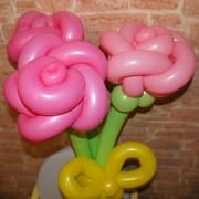 Букеты из цветных шариков фото