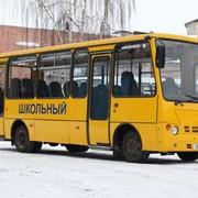 А301 Радзiмiч ШКОЛЬНЫЙ фото