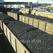 Anthracite coal selling for export фото