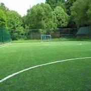 Стадионы футбольные фото