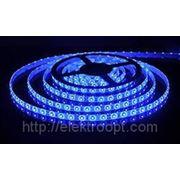 Лента LS 50В-30/65 30 LED 7,2Вт/м 12В IP65 синяя ASD фото