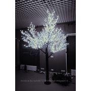 Neon-Night Светодиодное дерево Сакура, высота: 1,5 м, лепестков: 864, белое фото