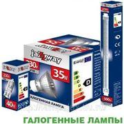 Лампы галогеновые JazzWay, MR11, MR16, линейные R7s, капсульные G4, G6.35, GU5.3, GU10, GU4 фото