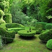 Озеленение в Астане фото