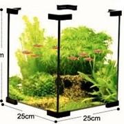 Нано-аквариум 18,5 литров фото