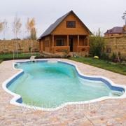 Бассейн с декоративными изгибами фото