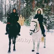 Катание верхом на лошади фото
