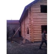 Дома из дикого сруба от производителя фото