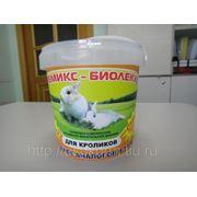 Премикс - Биолеккс для Кроликов (300 г.) (сут.нор. 1г.-1руб.) фото