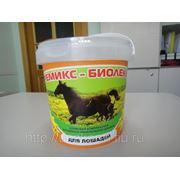 Премикс - Биолеккс для Лошадей (300 г.) (сут.нор. 5г.-5руб.) фото
