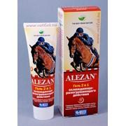 Alezan (Алезан) гель 2в1 охлаждающе-разогревающего действия фото